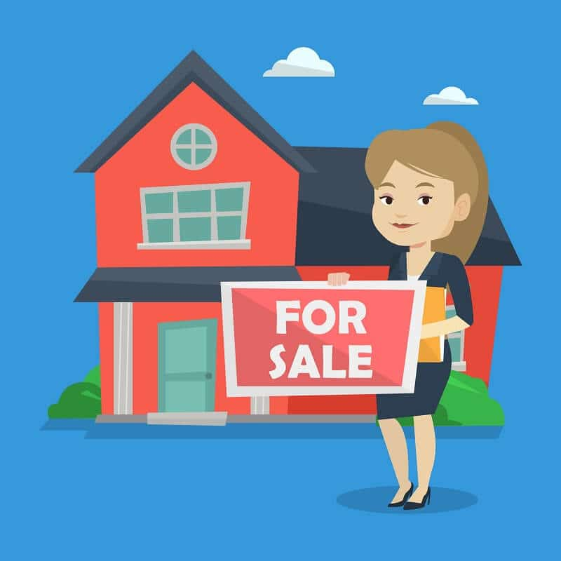 Houses for sale in the north